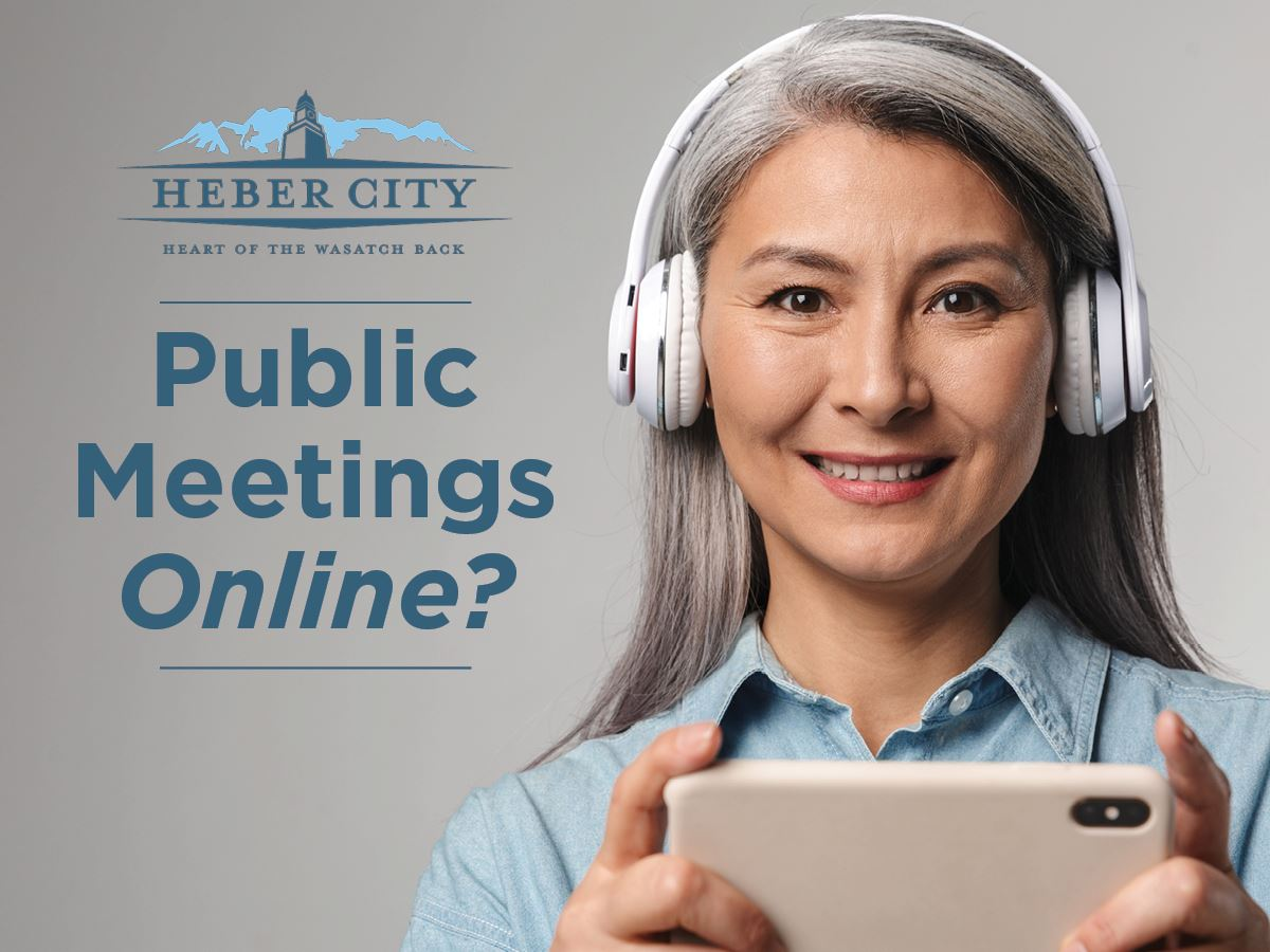 Public Meetings Online